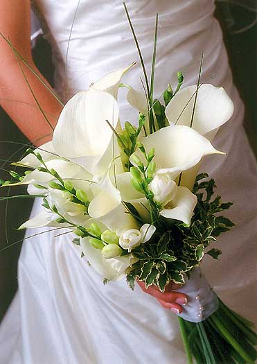 brides-bouquet-white-calla-lily