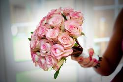 cezzane roses