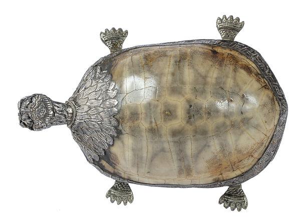 Schildpad tibet a.jpg