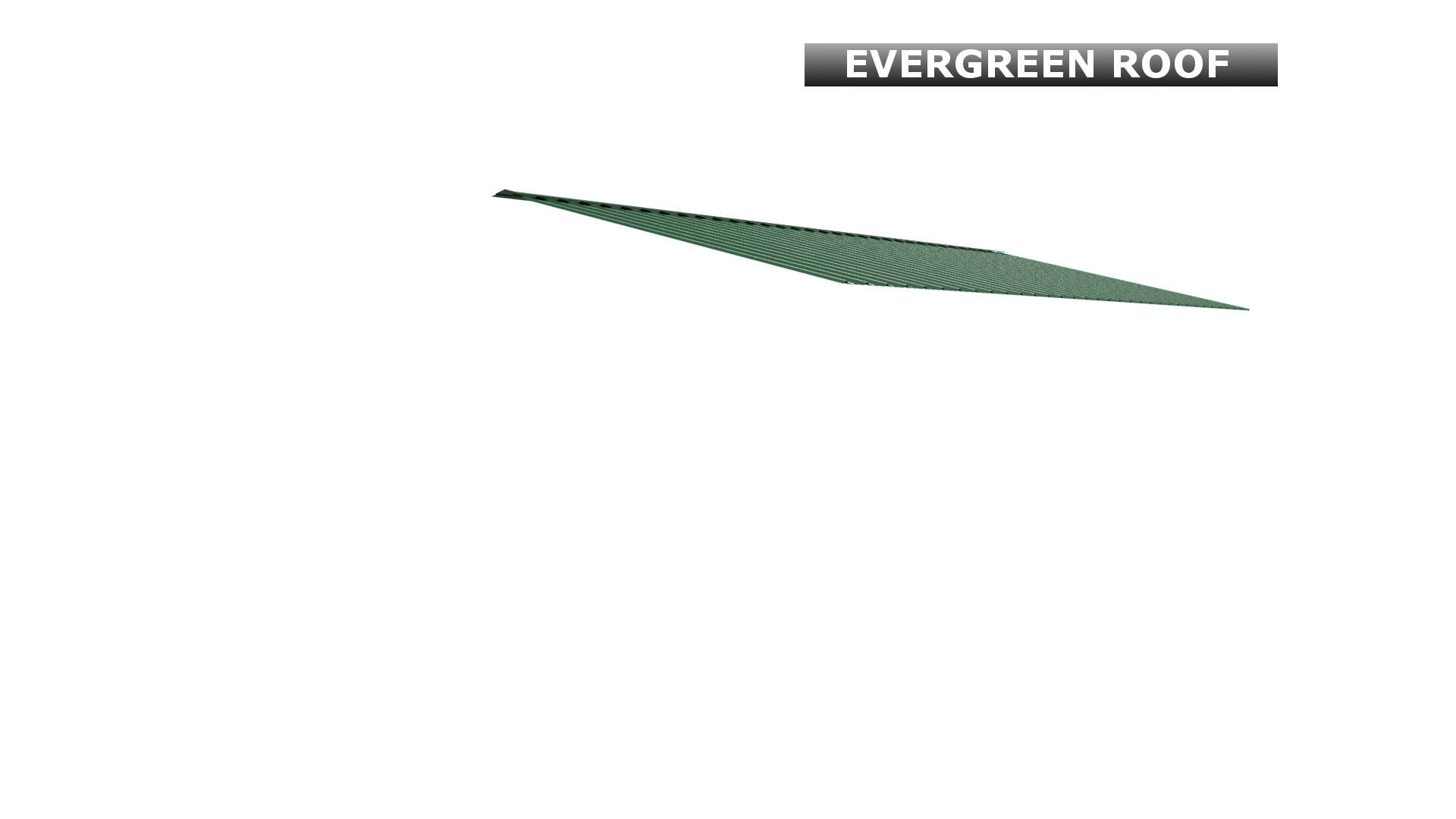 EVERGREEN ROOF
