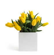 AGARTAL | Vase