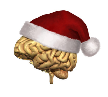 Use your Brain and have a Happy Christmas