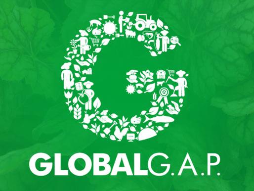 TUDO QUE PRECISA SABER PARA INICIAR NA CERTIFICAÇÃO GLOBAL G.A.P.