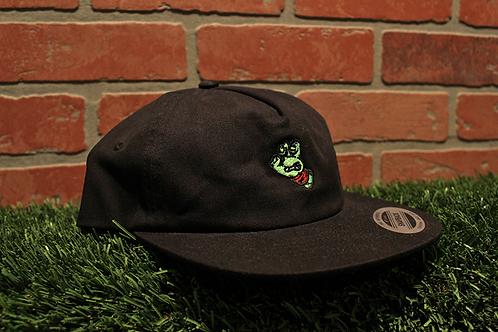 Santa Cruz TMNT Hat
