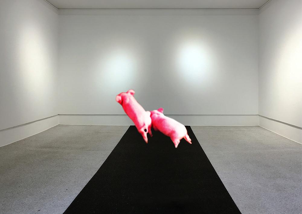 Die Oltner Künstlerinnen Andrea Nottaris und Gabrèle Gisi, treffen in der Ausstellung des Kunstverein Olten, mit unterschiedlichen Medien aufeinander