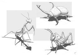 Bug sketches