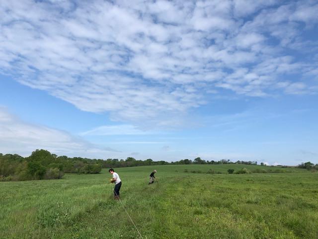 two men in green field