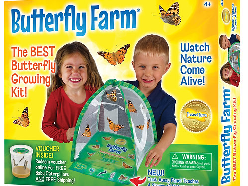 Butterfly Farm by Insect Lore