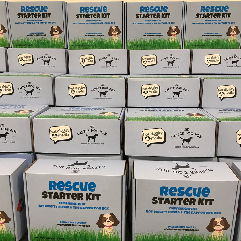 Hot Diggity Media's spring event, Celebrities to the Rescue benefiting Rescue from the Hart.