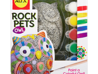 ALEX Toys Rock Pet - Owl