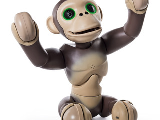 Zoomer Chimp by Spin Master