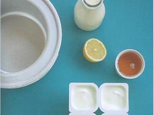 Frozen Yogurt Natur, Rezept zum Selbermachen