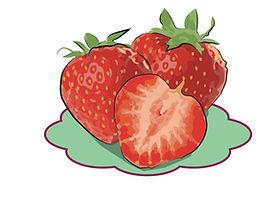 Erdbeeren froh biyo