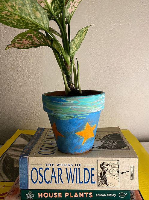 "4.5"" Dreamy Mini Pot"