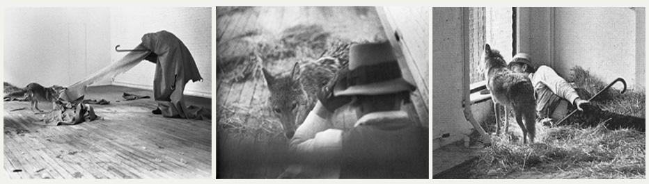 Beuys & canine