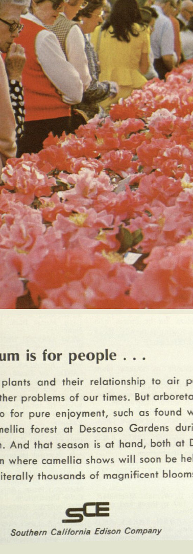 An Arboretum is for people...