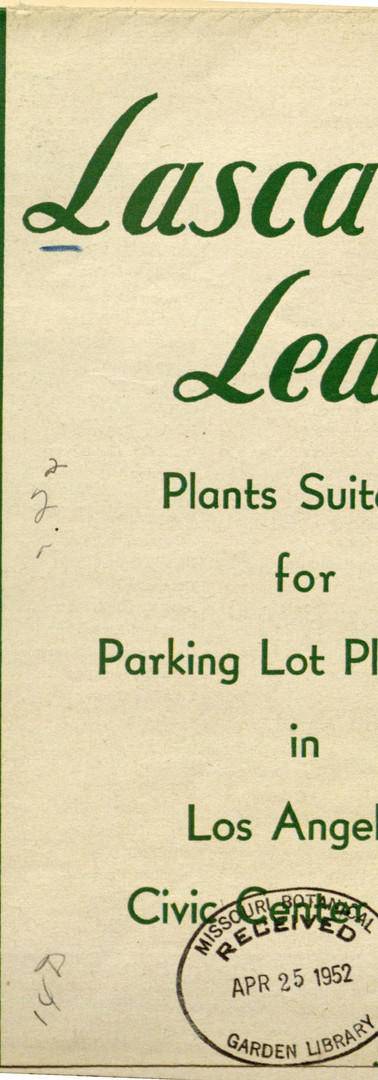 Plants Suitable for Parking Lots