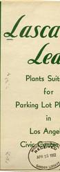 Plants Suitable for Parking Lots