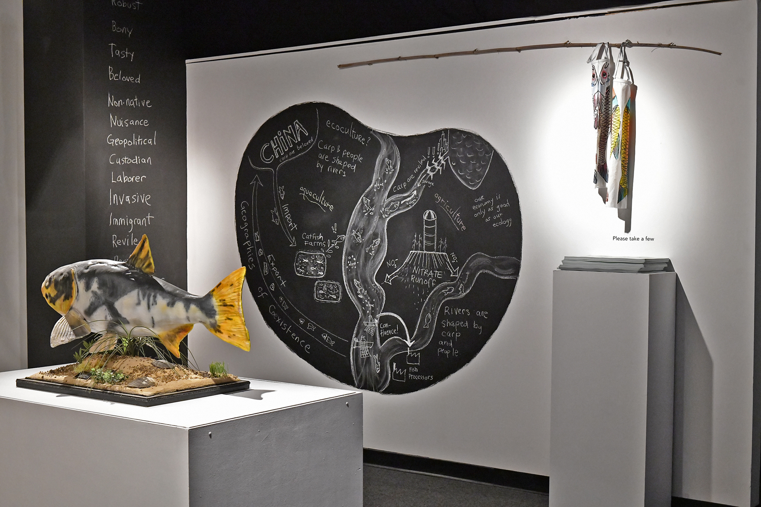 A diagram of the Asian Carp econo-ecology