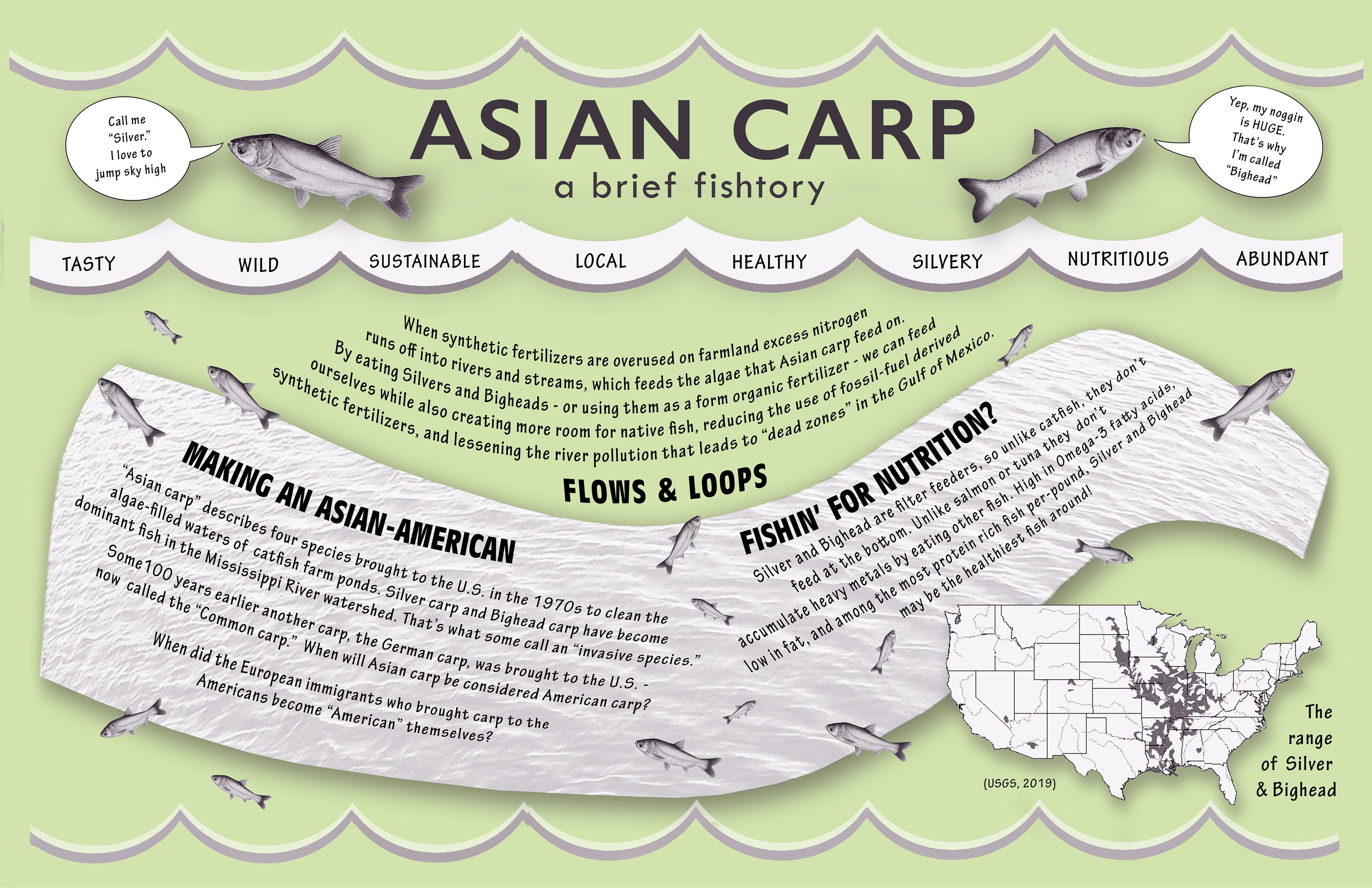 Asian CArp Placemats