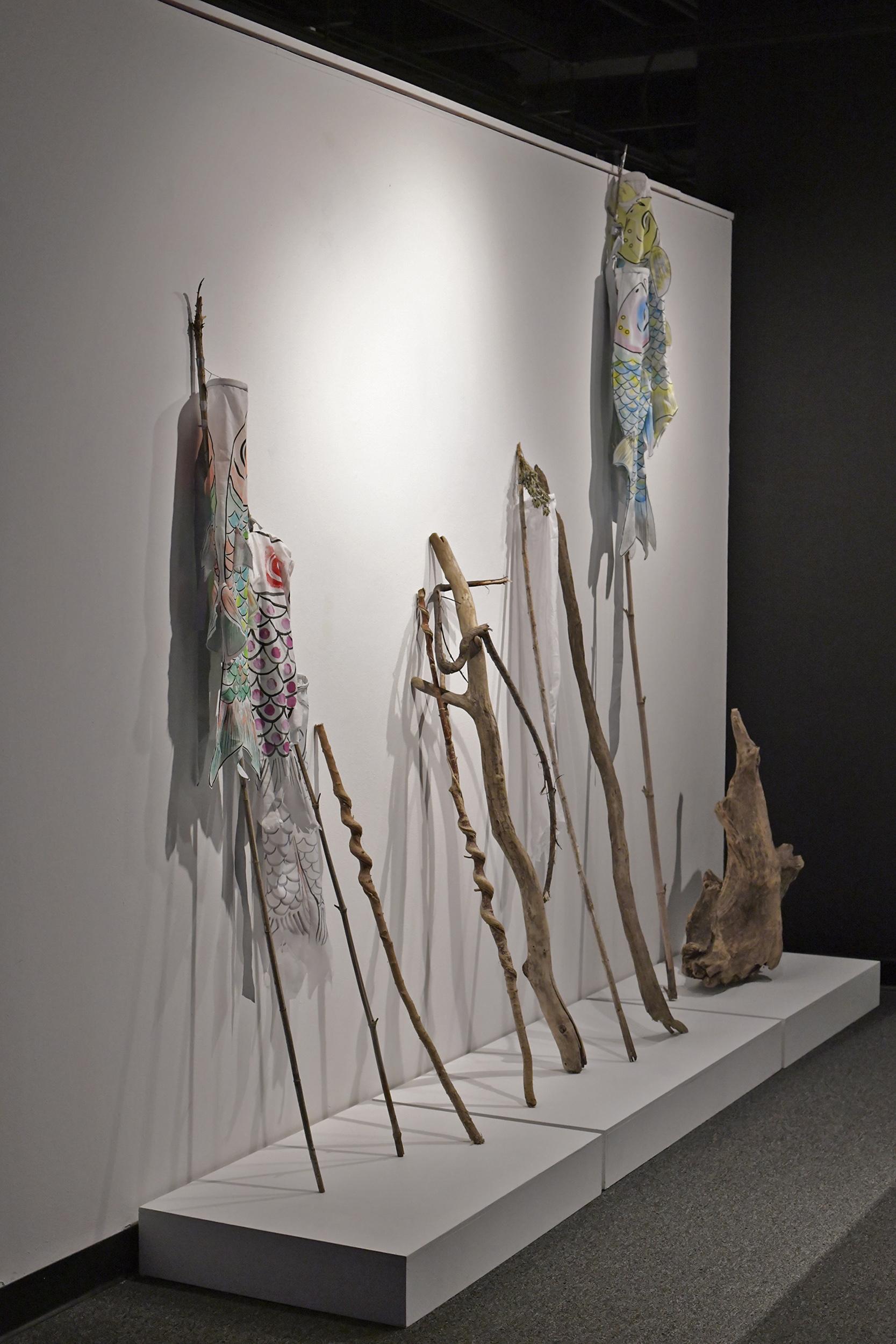 Carp Kites + Driftwood
