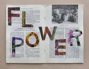 Flower Power, 2019