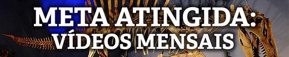 META ATINGIDA VIDEOS MENSAIS.jpg