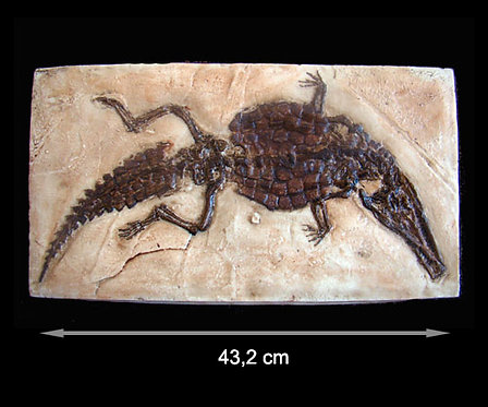 Pholidosaurídeo