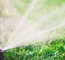 Water Sprinkler_edited.jpg