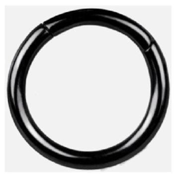 Titanium Segment ring Black line 1,6 x 10 mm