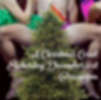 Christmas Corset Promo.jpg