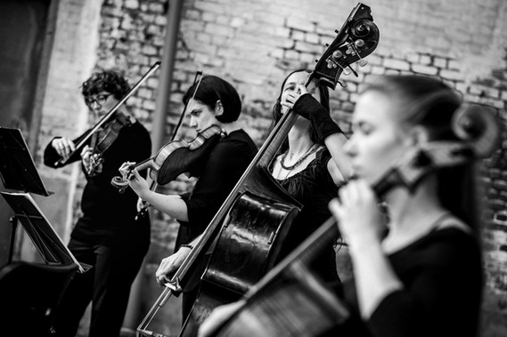 Bryggen_Bruges_Strings-26.jpg
