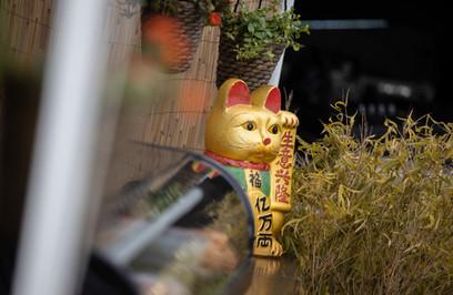 Mobiele sushibar Esaki Sushi