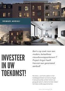 DomusAnguli_Flyer_Investeer.jpg