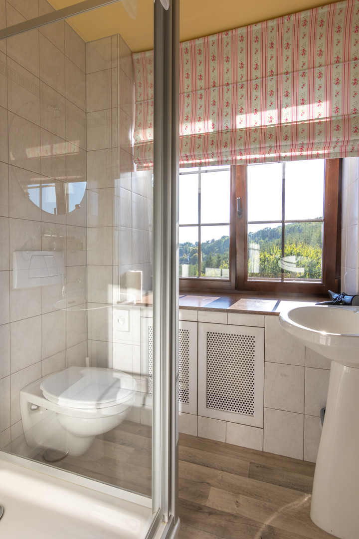 Badkamer met douche bij Hostellerie Beau in Trois-Ponts