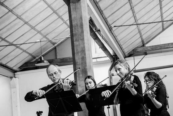Bryggen_Bruges_Strings-11.jpg