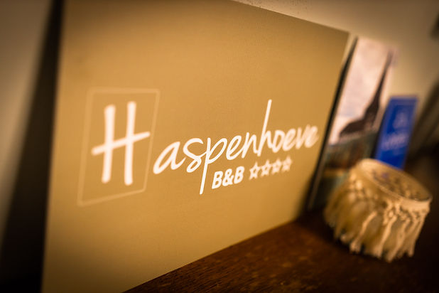 Grote en kleine (bedrijfs)feesten bij B&B Haspenhoeve in Herstappe