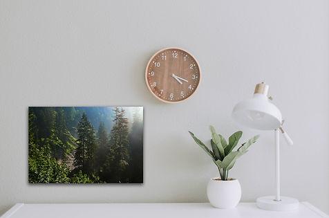 klein forest.jpg
