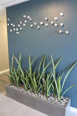 modern lobby accent wall in a commercial building