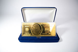 Silver Currency Capsule