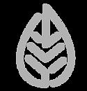 leaf grey-01.png