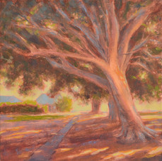 'A sunlit day', Oil on wood panel, 21.5 x 21.5cm, $310