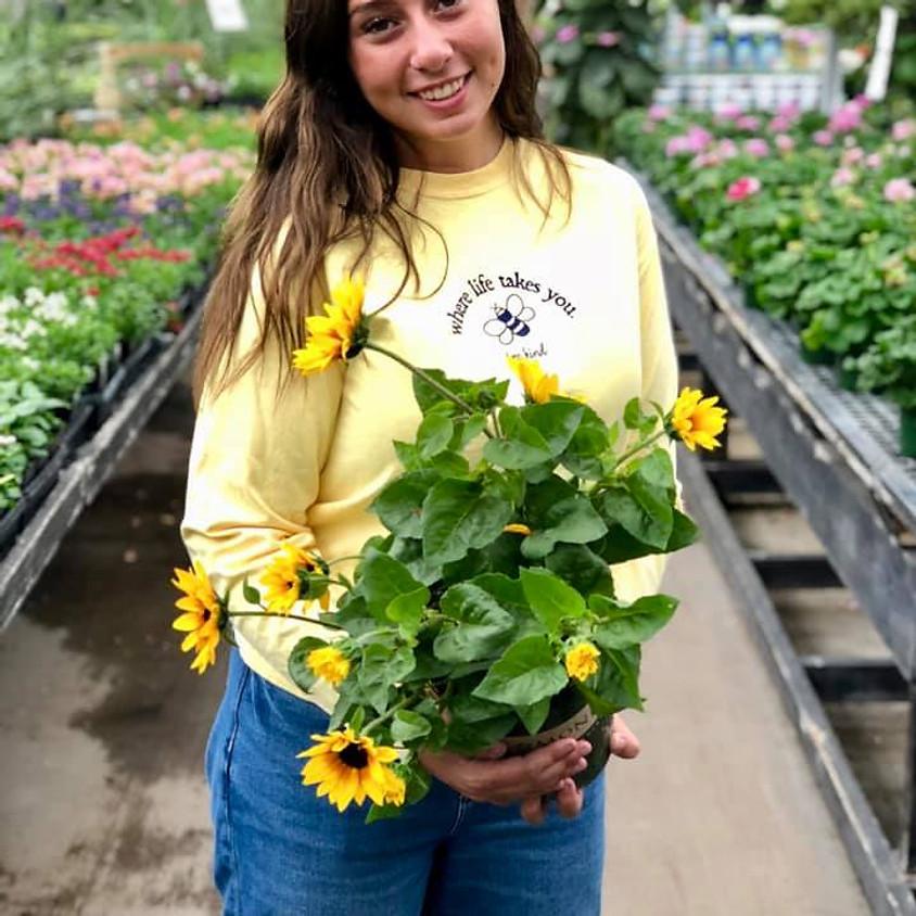 What's New this season Annuals/Perennials