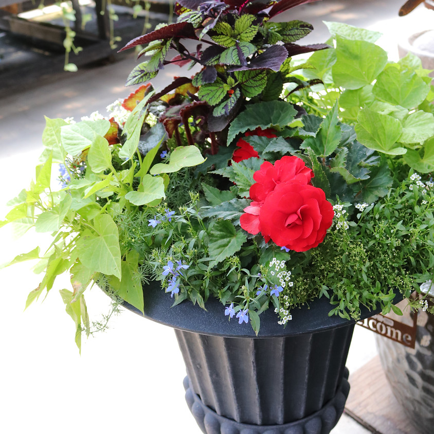 DIY Planter/Container