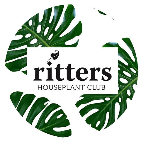 1 year Houseplant Club Membership