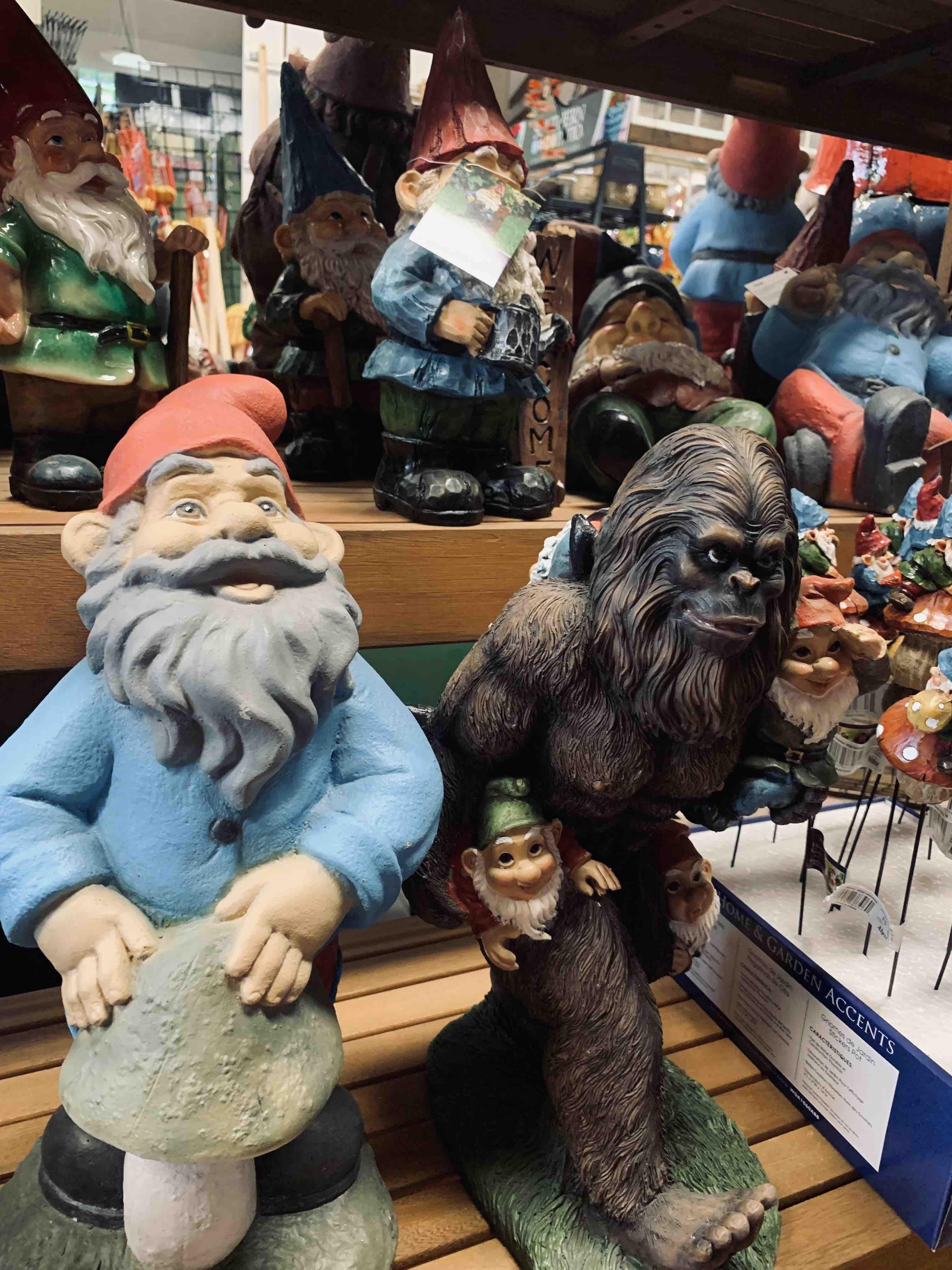 Bigfoot with gnomes