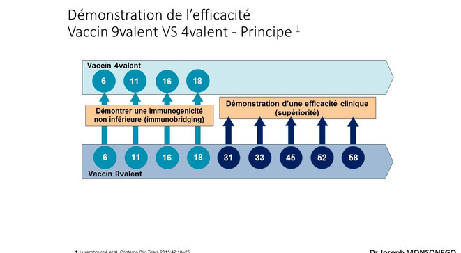 Diapositive22.JPG