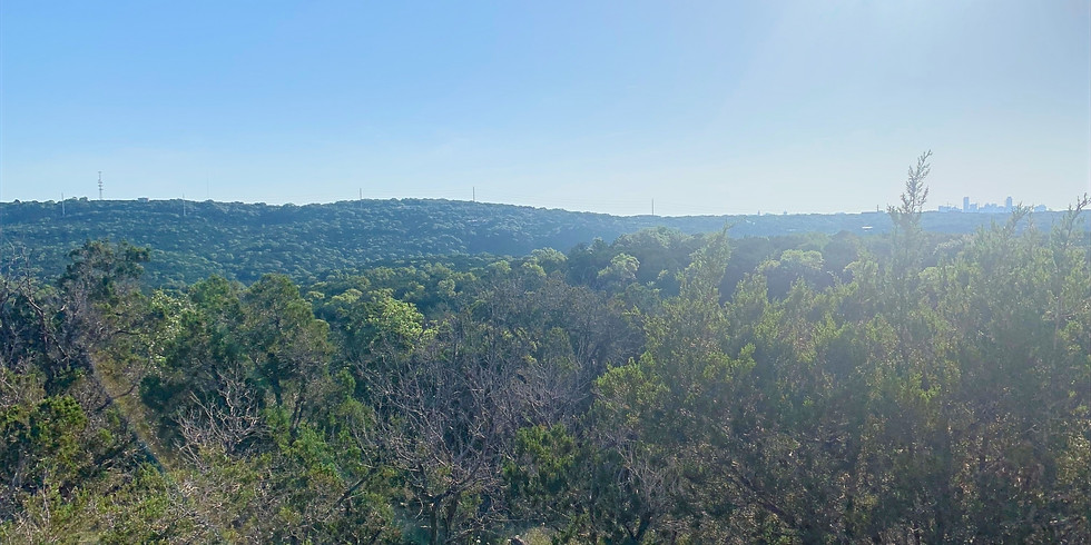 Guided Travis Country Hike