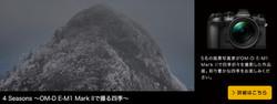 4 Seasons~OM-D E-M1 Mark IIで撮る四季~