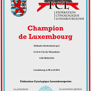 FCI Champion of Luxemburg